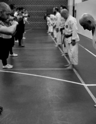 Nekobukai. Scuole di karate e kung-fu si salutano rispettosamente